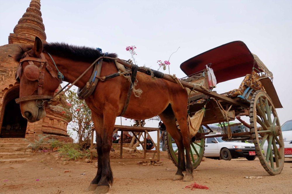 Bagan_086