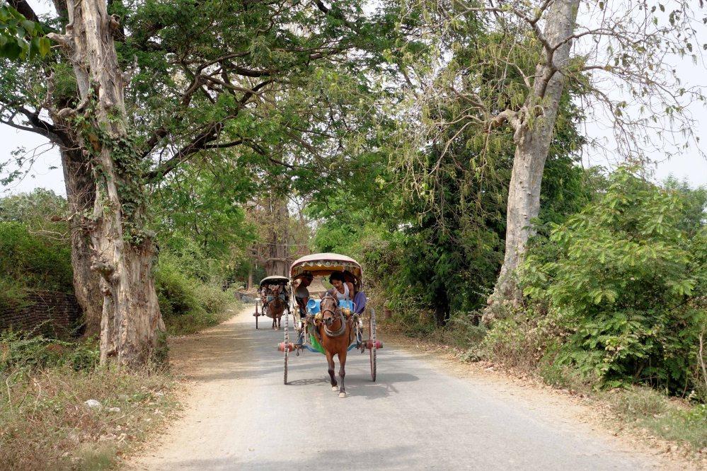Bagan_345