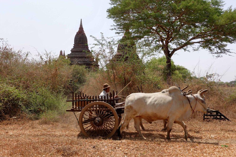 Bagan_352