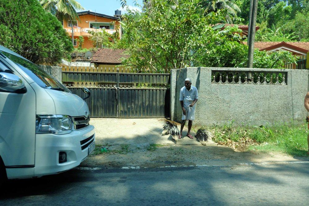 Sigiriya_028