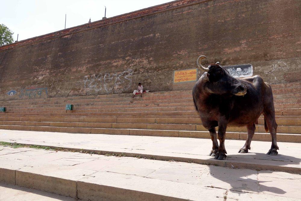 Varanasi_017