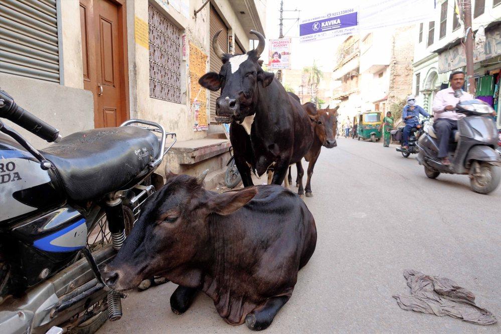 Varanasi_020