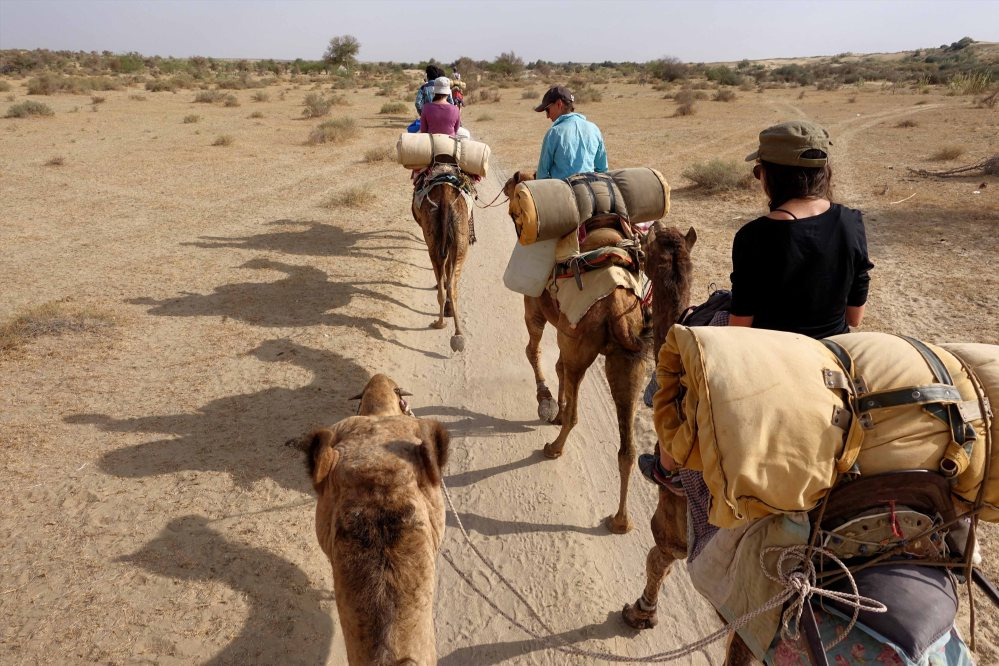 Thar-Desert-Safari_003