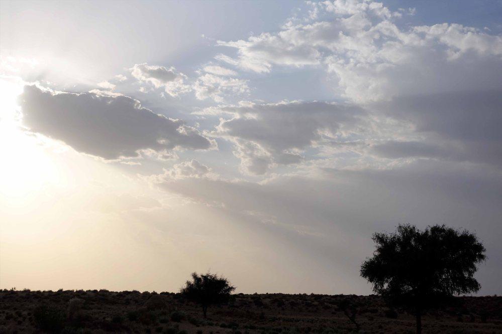 Thar-Desert-Safari_012