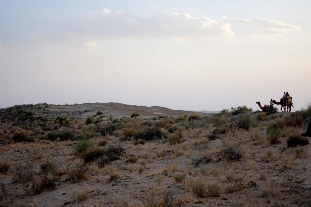 Thar-Desert-Safari_015