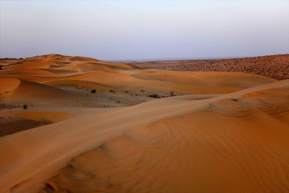Thar-Desert-Safari_023