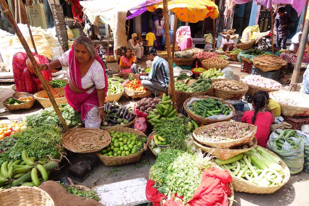 Udaipur_103